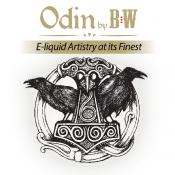 ODIN (1)